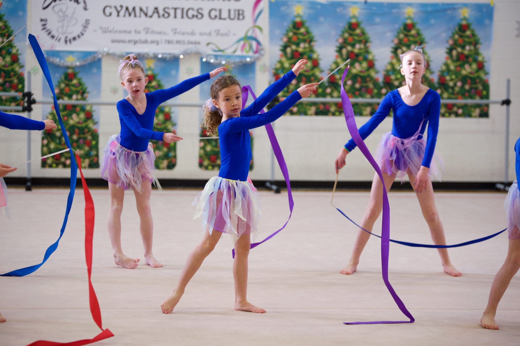 Elena's RG, Edmonton, Recreational, Gymnastics, Registration